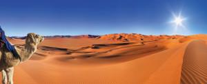 En plein désert